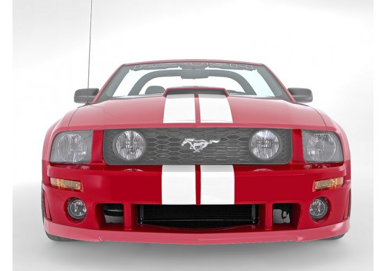 Mustang Front Fascia (2005-2009)