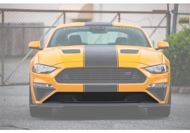 2018-2019 ROUSH Mustang Lower High-Flow Grille Opening