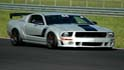 ROEA Track Day (TheChromePony.com)